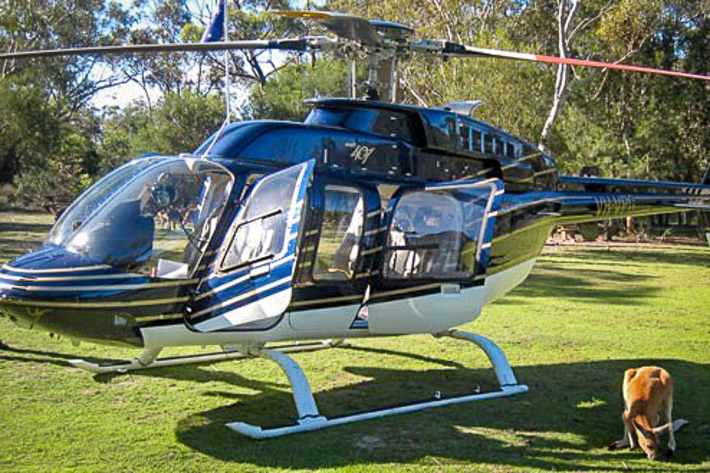 helicopter transport for tours and scenic flights